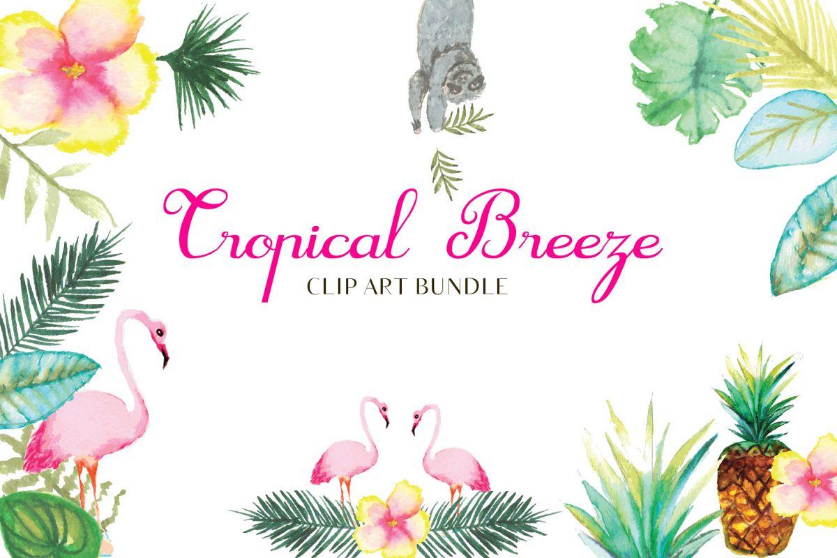 Tropicla Breeze clip art bundle example image 1