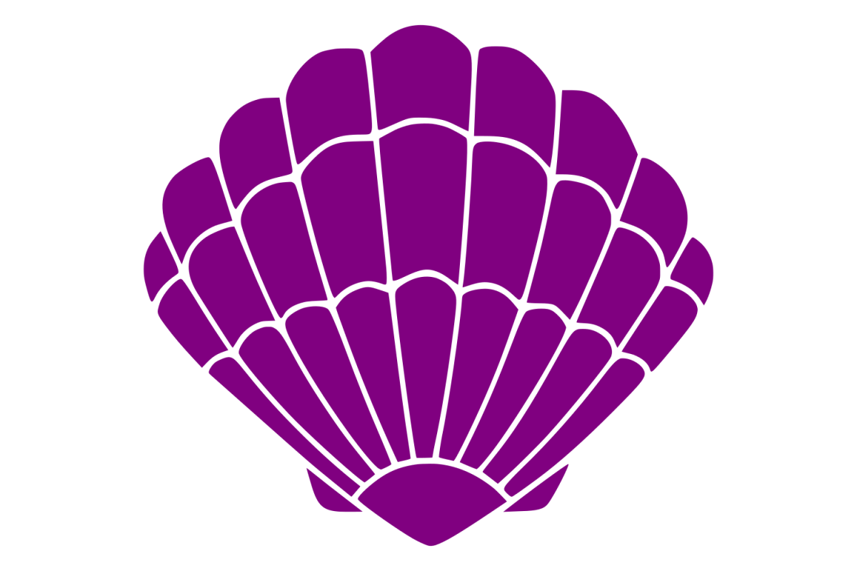 Sea Shell svg