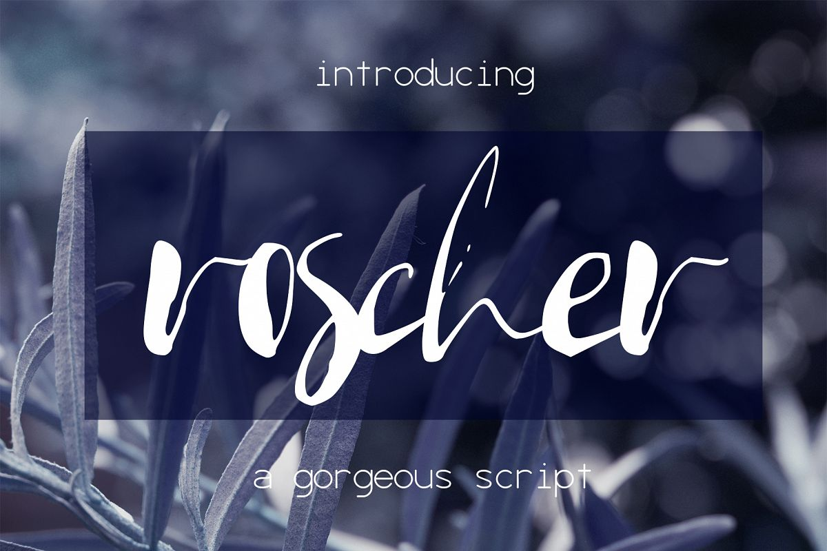 Roscher Font example image 1
