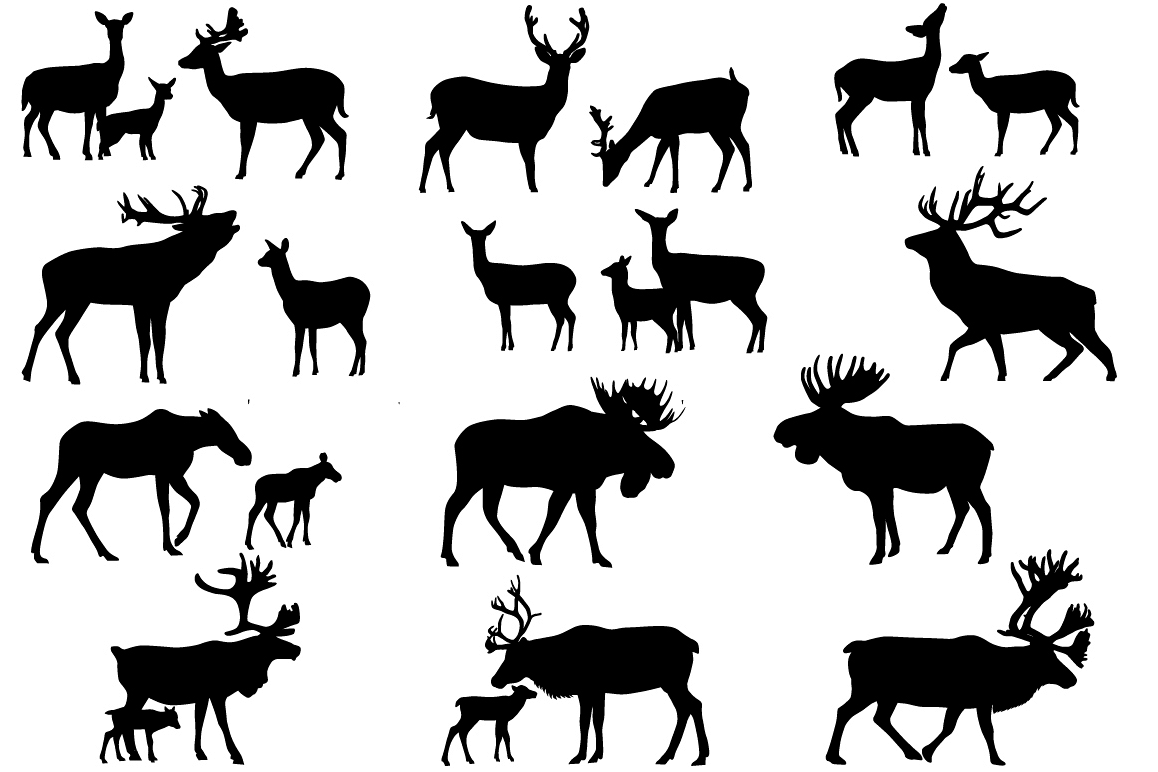 Deer family example image 1