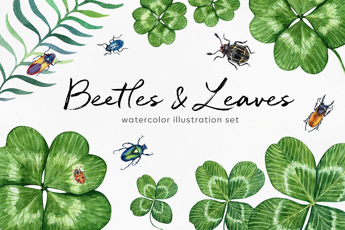 Beetles & Leaves. Watercolor set illustrations example image 1