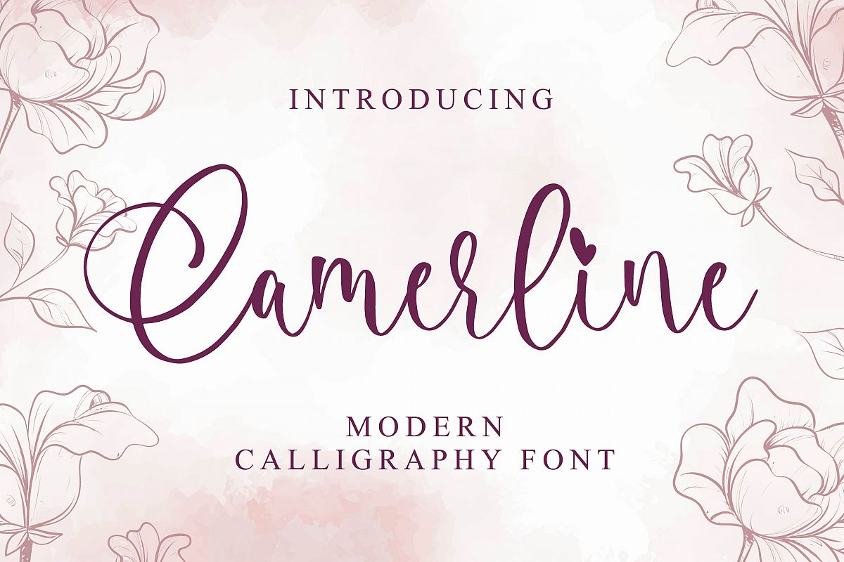 Camerline - Modern Calligraphy Font example image 1