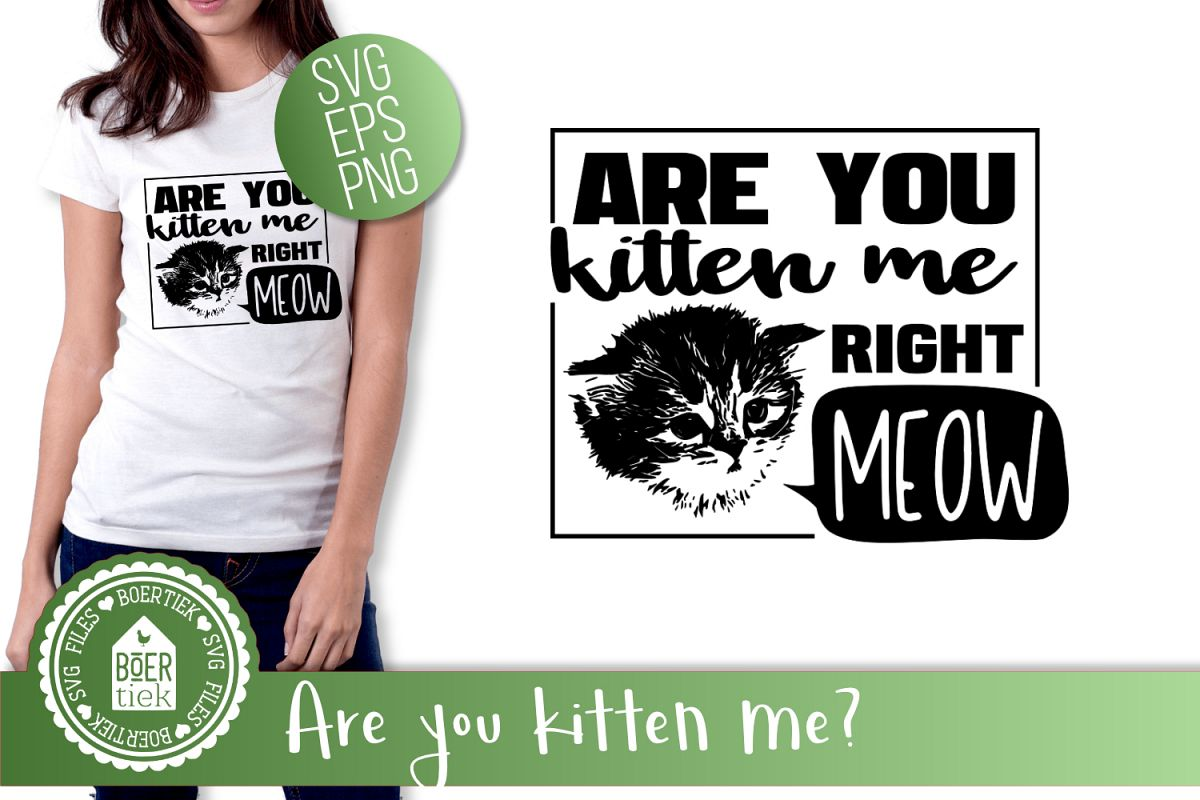 Are you kitten me example image 1