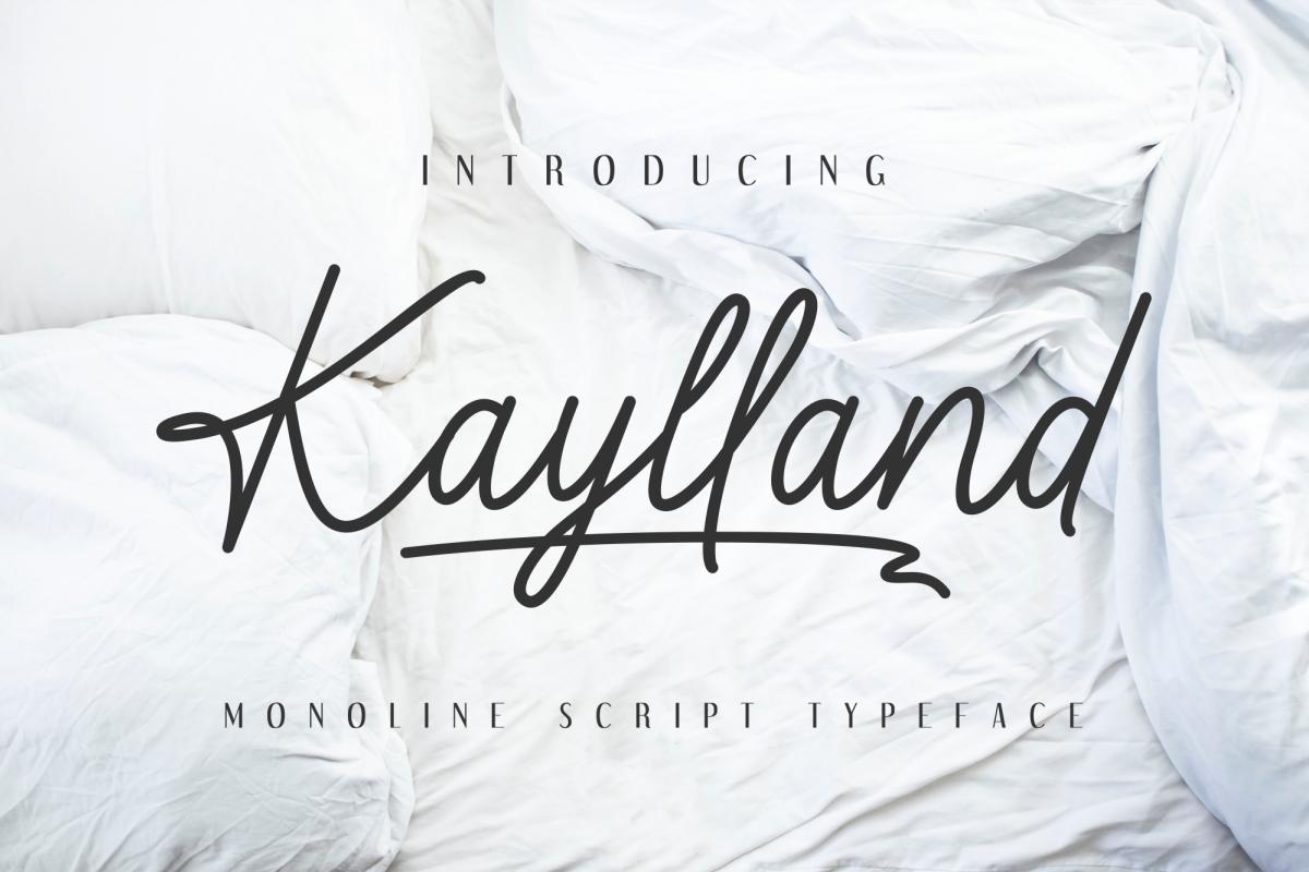 Kaylland example image 1