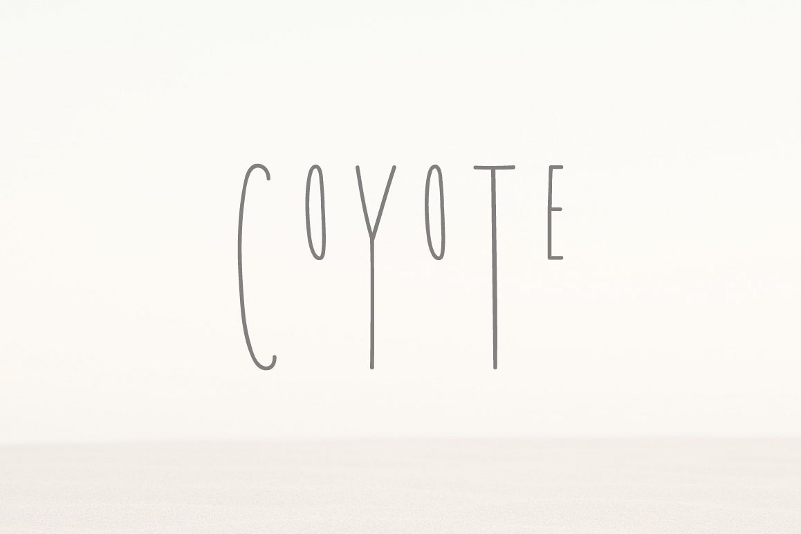 Coyote | A Playful Font example image 1