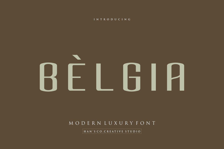 Belgia Font example image 1