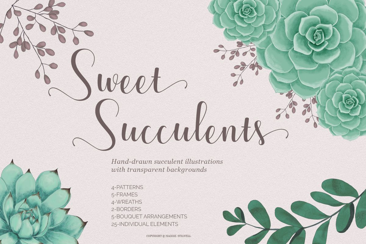 Sweet Succulents Design Set example image 1