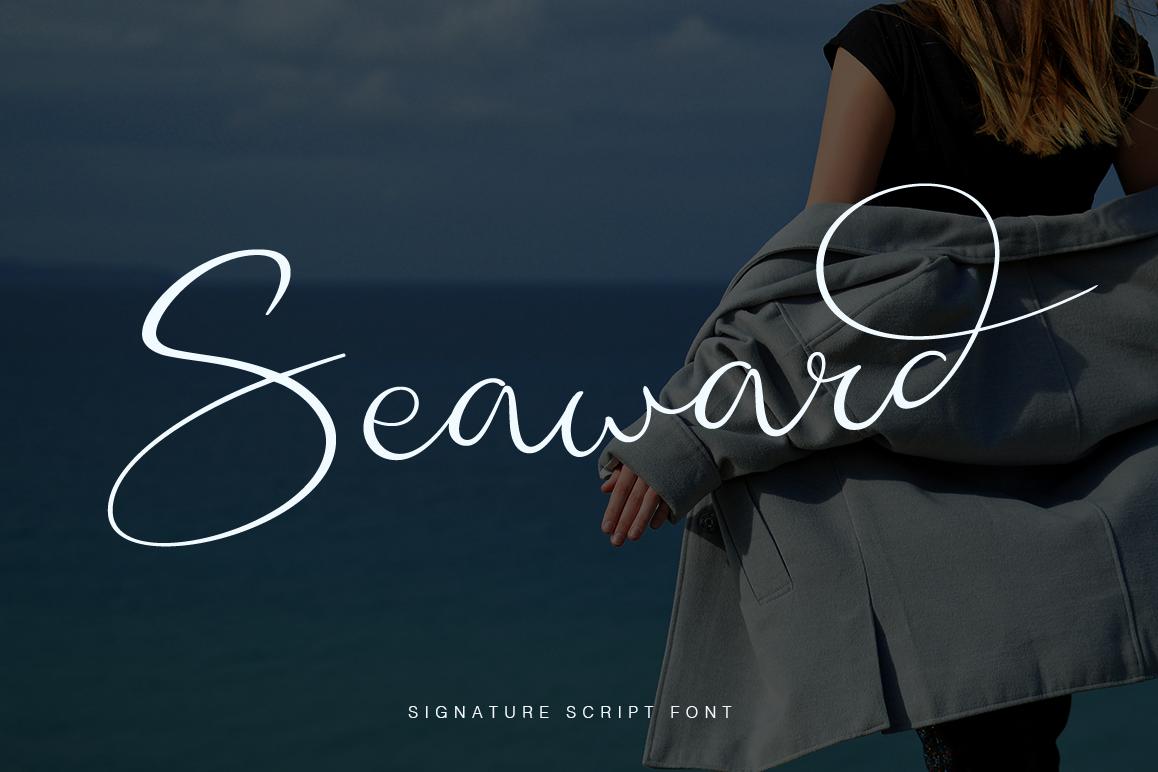 Seaward example image 1