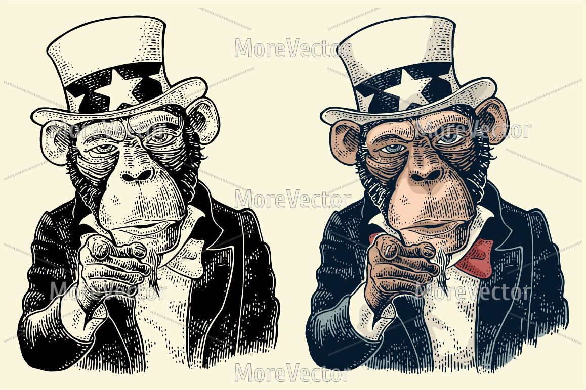 Monkey Uncle Sam with pointing finger at viewer. Vintage black engraving example image 1