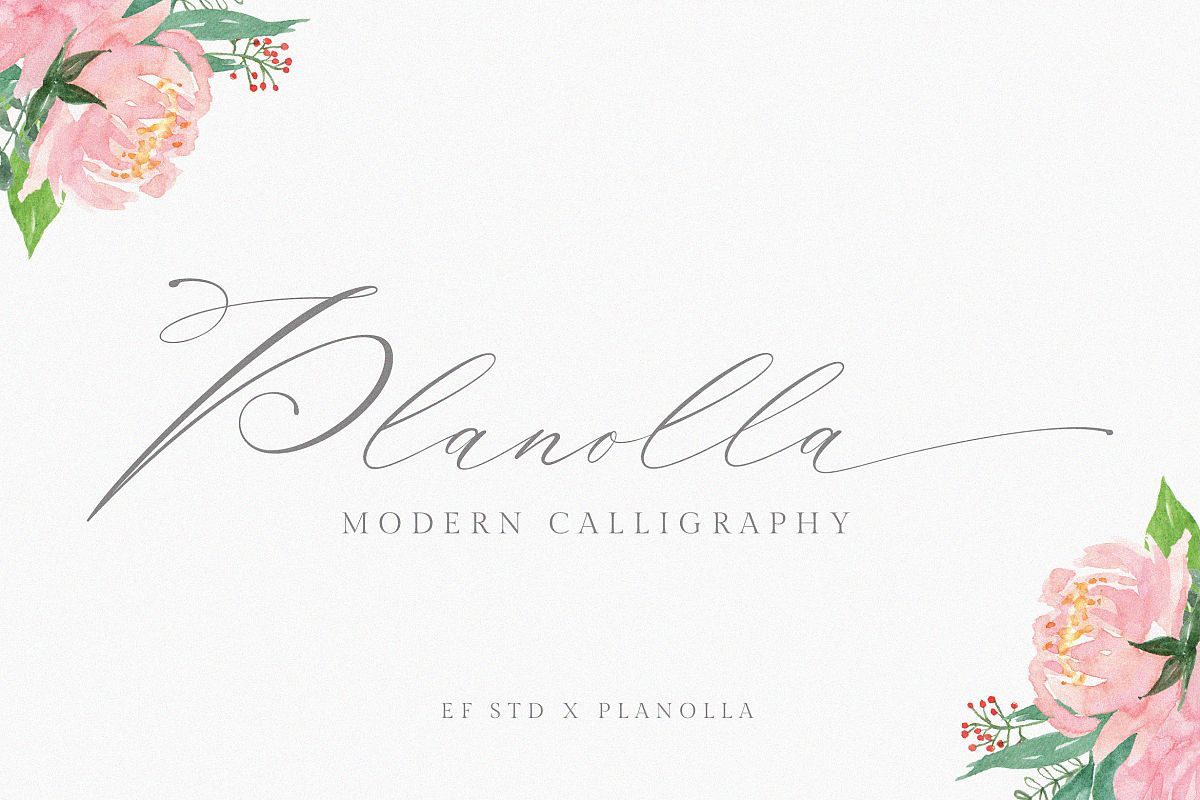 Planolla | Modern Calligraphy example image 1
