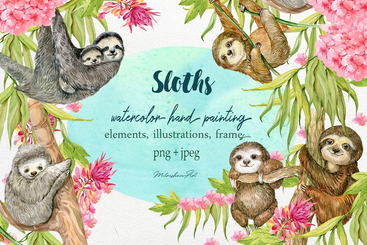 Sloth. Watercolor Clipart. example image 1