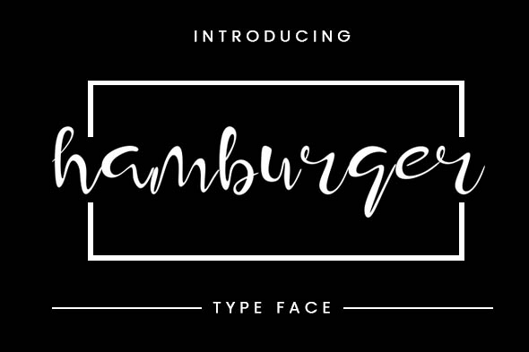 Hamburger Typeface example image 1