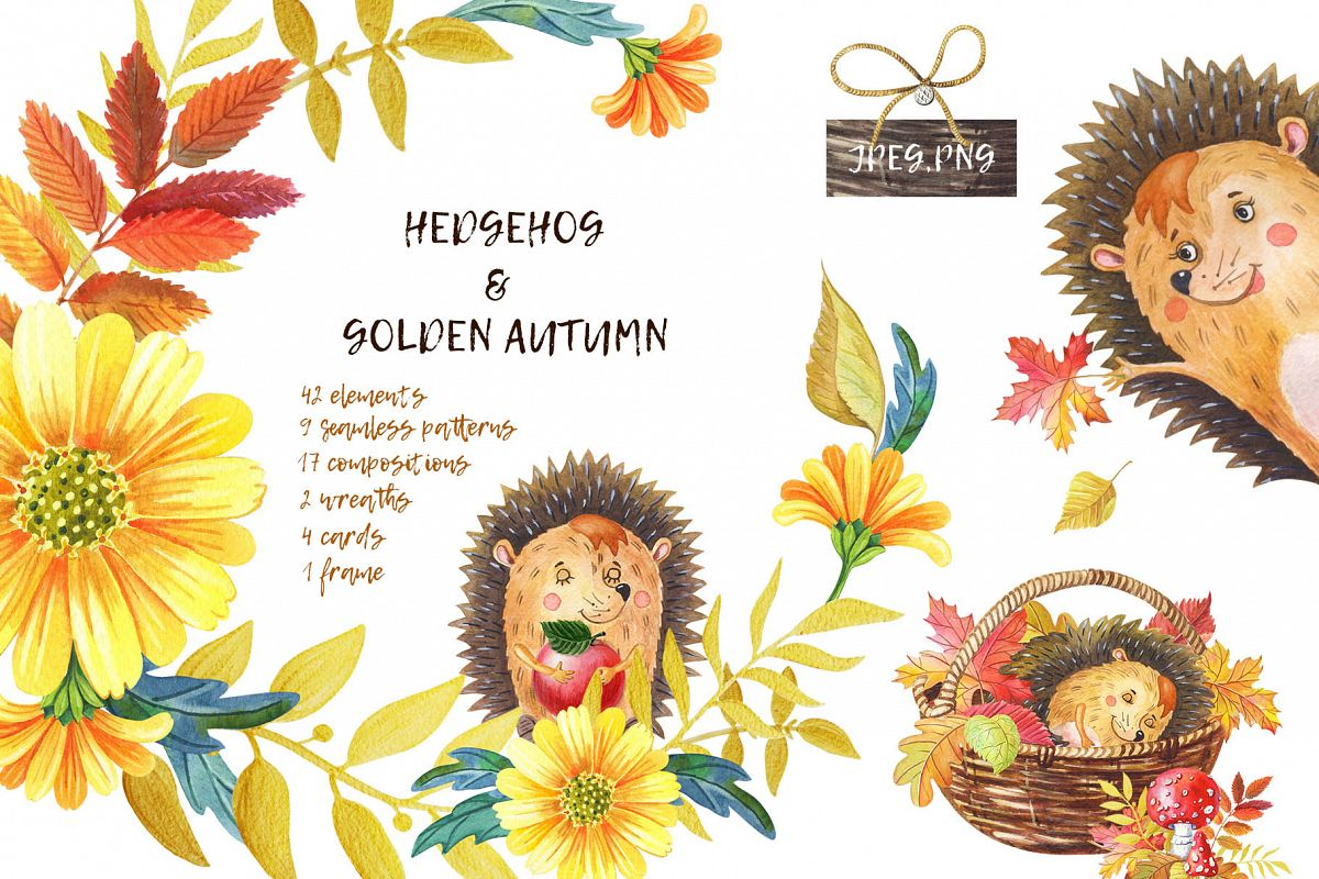 HEDGEHOG & GOLDEN AUTUMN example image 1