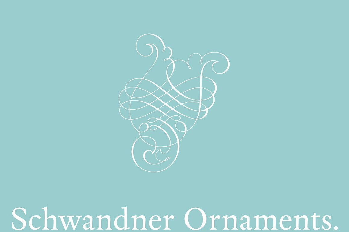 Schwandner Ornaments example image 1