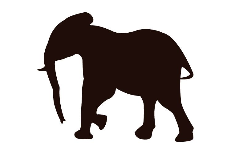 elephant icon design bundles