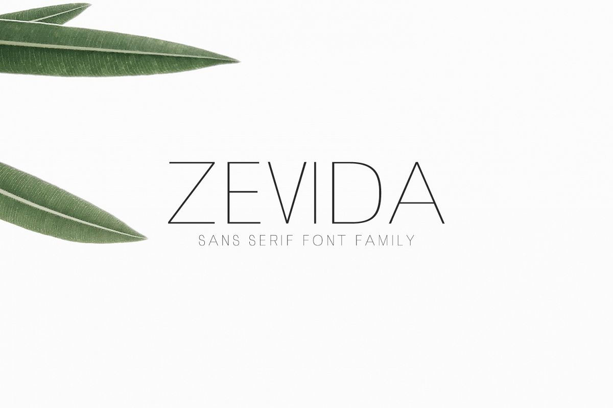 Zevida 4 Sans Serif Font Family example image 1