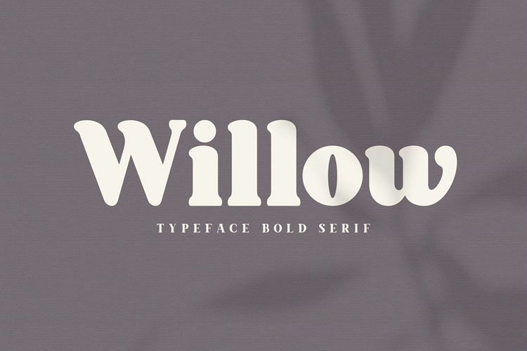 Willow. Typeface Bold Serif example image 1