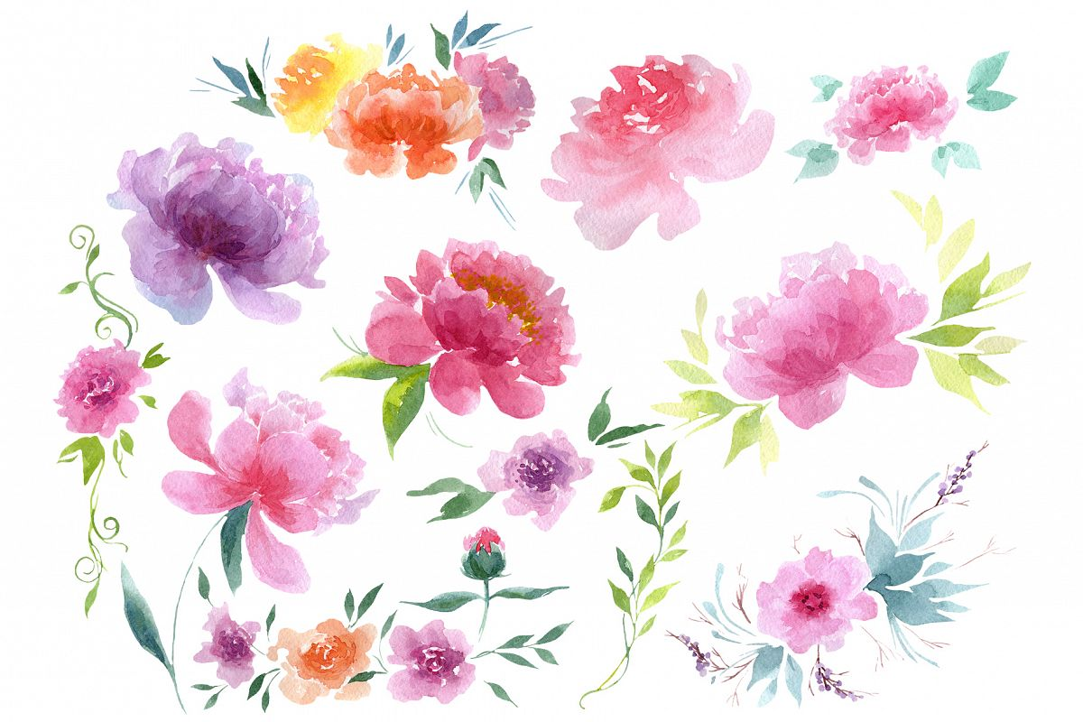 Delicate colorful peony PNG watercolor set example image 1