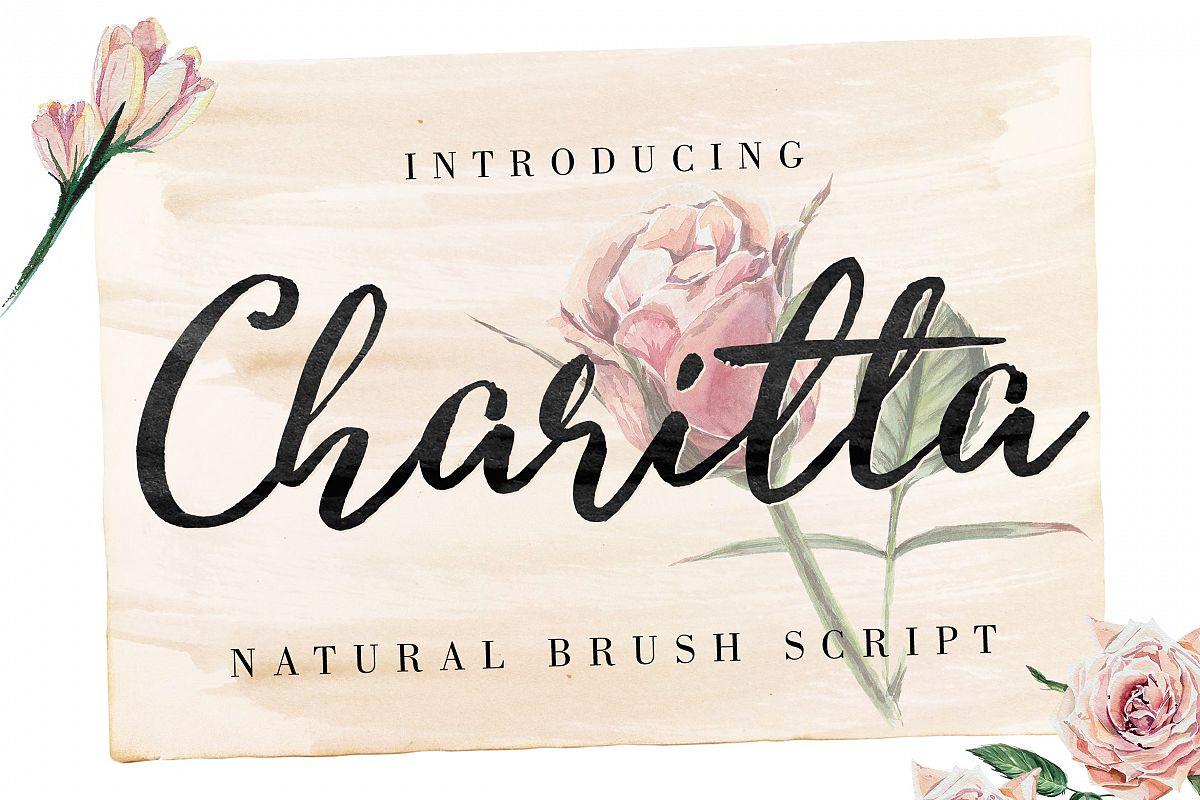 Charitta Organic Script example image 1