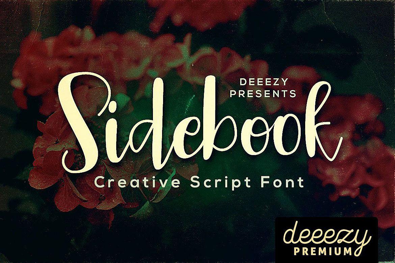 Sidebook Script Font example image 1