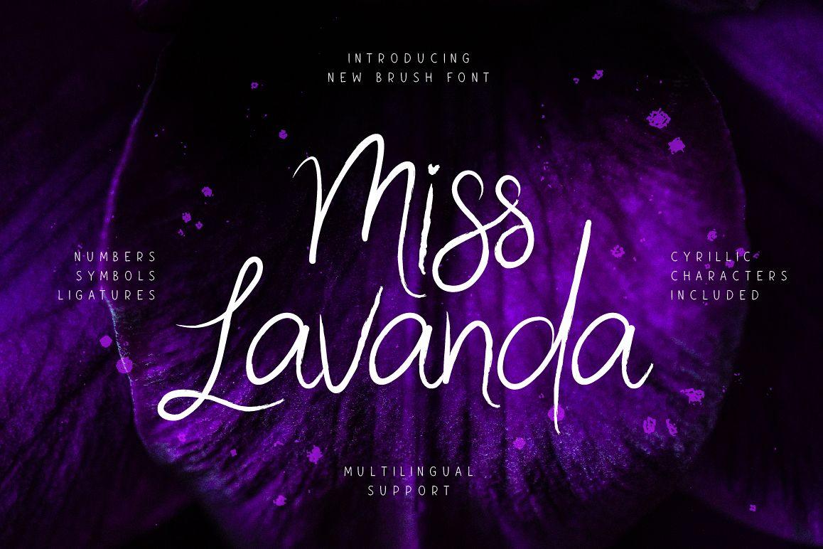 Miss Lavanda example image 1