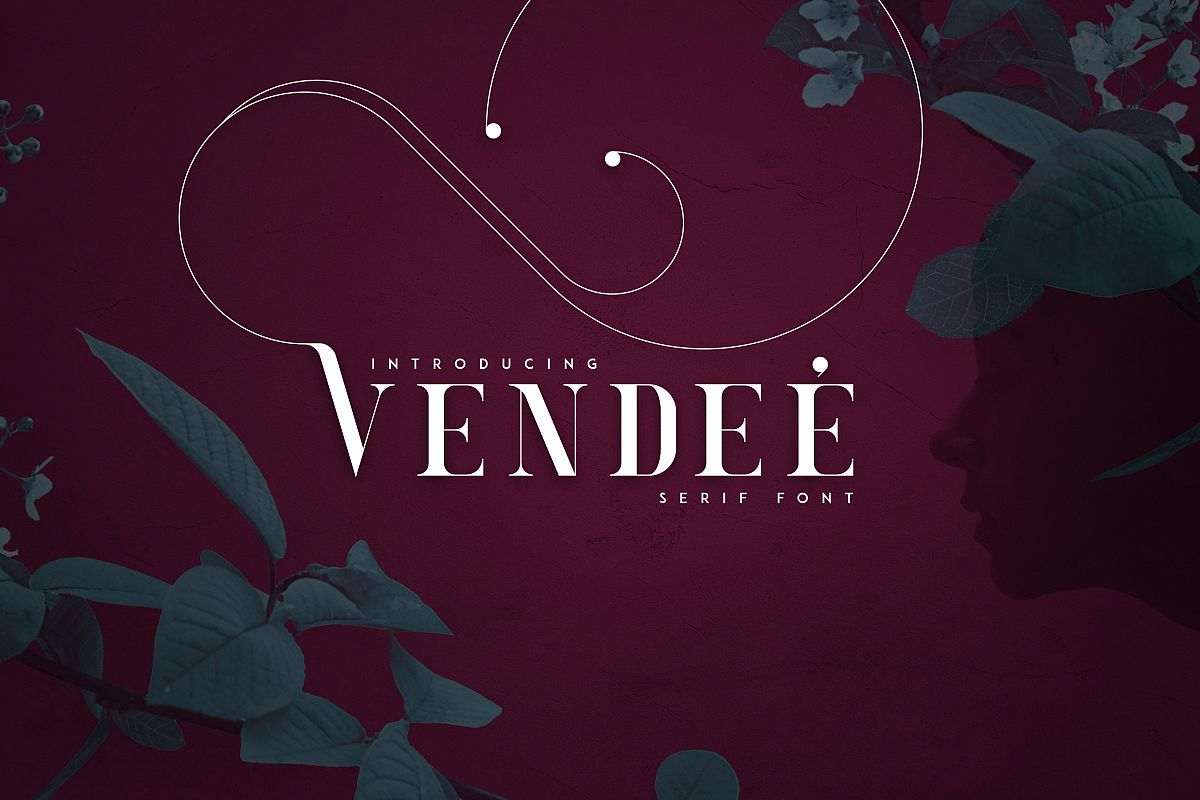 VENDEE - Serif font example image 1