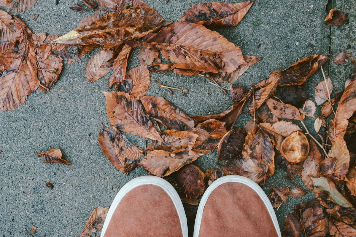 Feet man walking on fall leaves example image 1