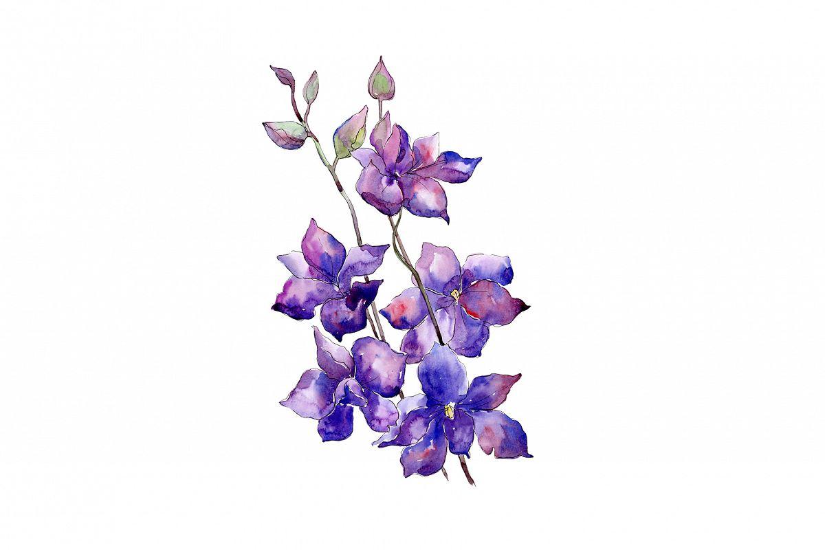 Bouquet Of Purple Flowers Png Watercolor Set