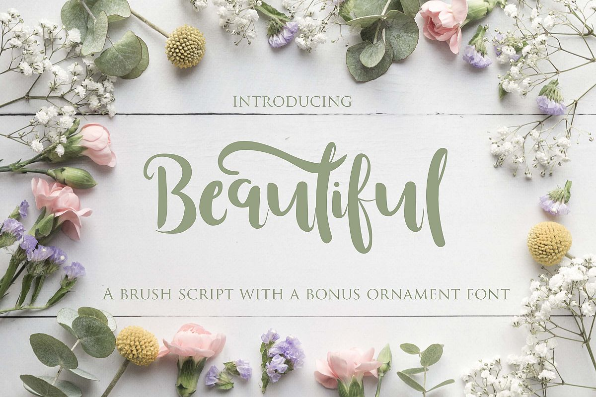 Beautiful Font with Bonus Ornament font example image 1