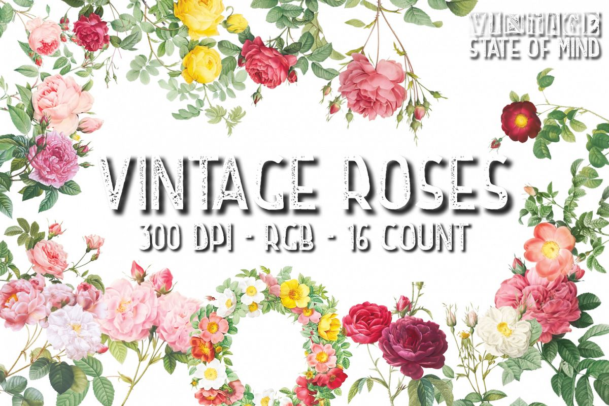 Vintage Rose Clipart Sublimation Graphics example image 1