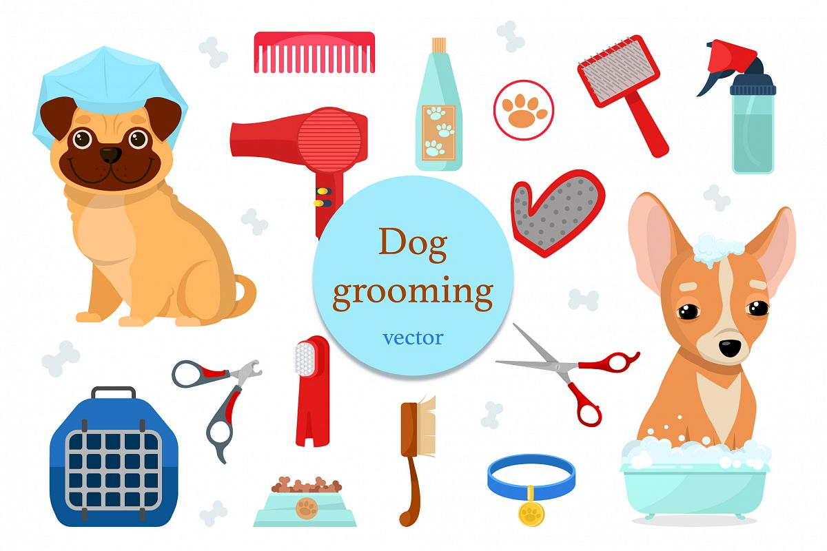 Dog grooming example image 1