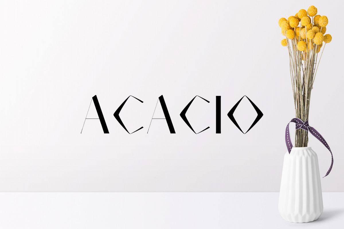 Acacio Serif 2 Font Family Pack example image 1