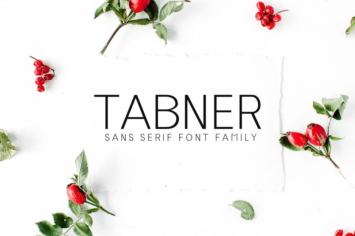 Tabner Sans Serif Font Family example image 1