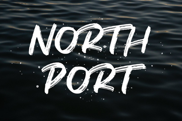 North Port | All Caps Brush Font example image 1