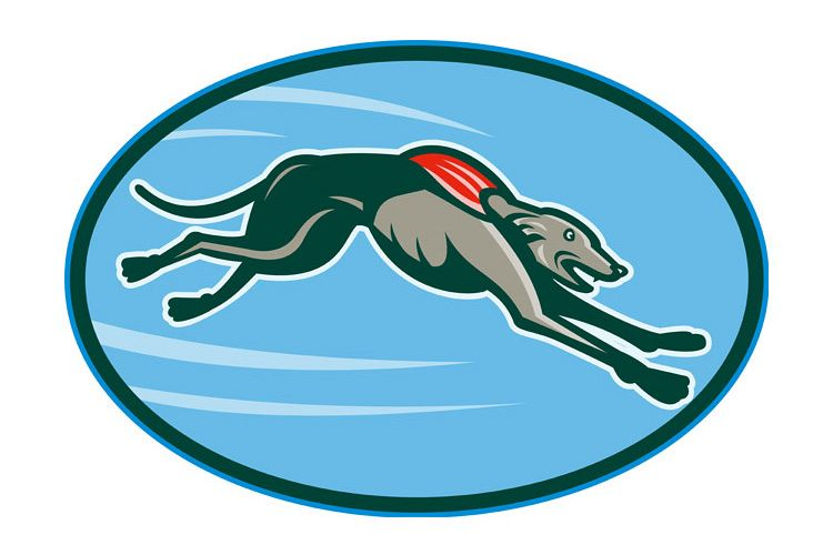 Greyhound racing and jumping set inside oval example image 1