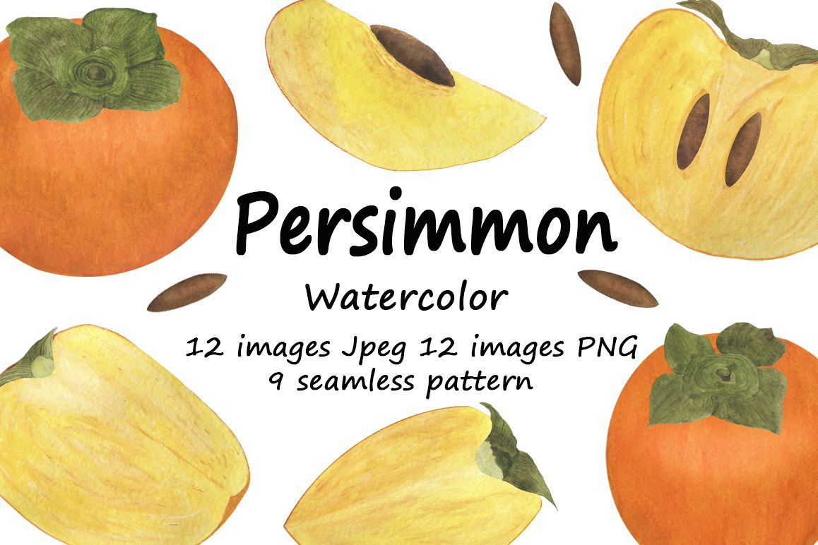 Set of persimmon watercolor illustrations. example image 1