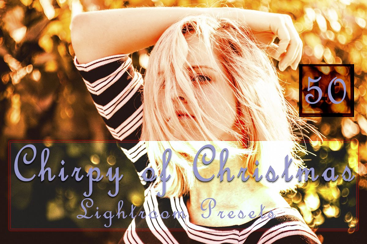Chirpy of Christmas Lightroom Presets example image 1
