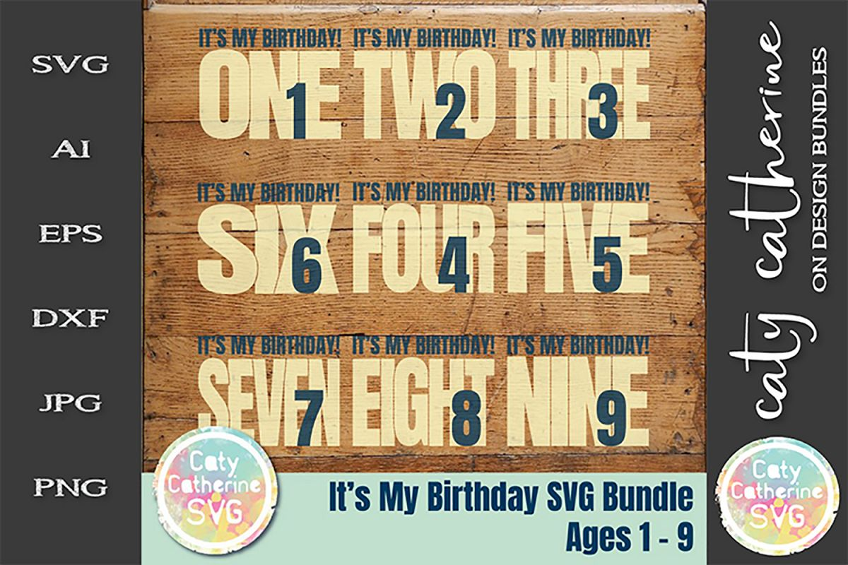 It's My Birthday Bundles Ages 1-9 SVG Cut File example image 1