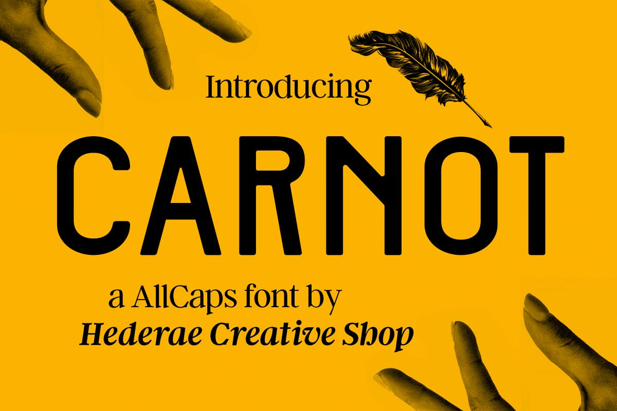 Carnot Typeface example image 1