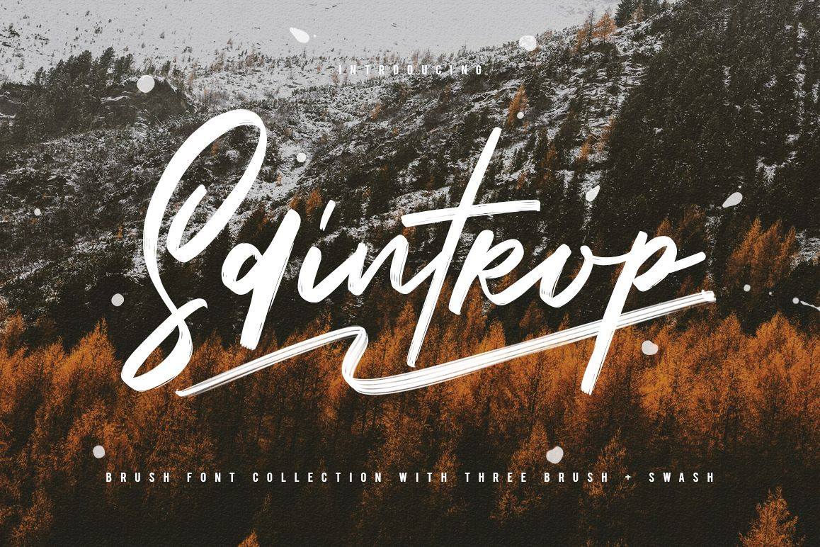 Saintrop Brush Font Collection example image 1