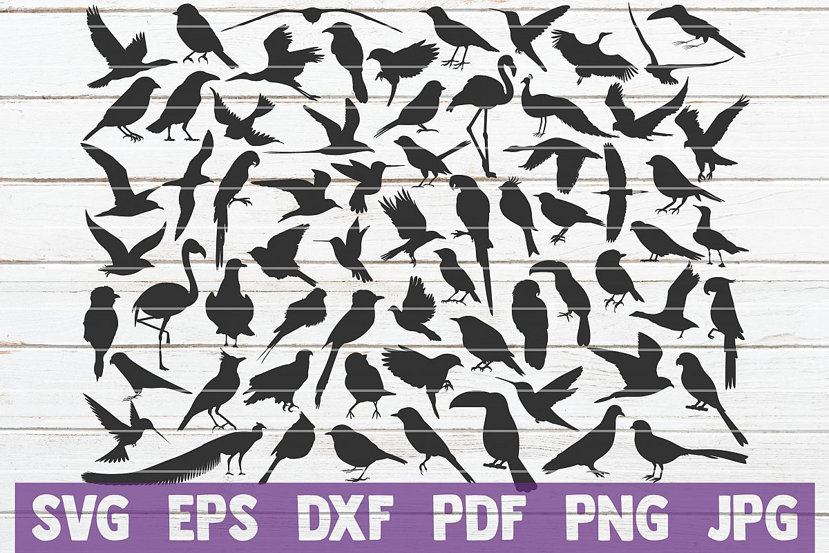 Birds SVG Cut File | commercial use example image 1