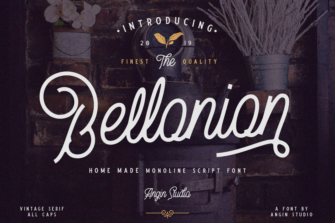 Bellonion Monoline Script example image 1