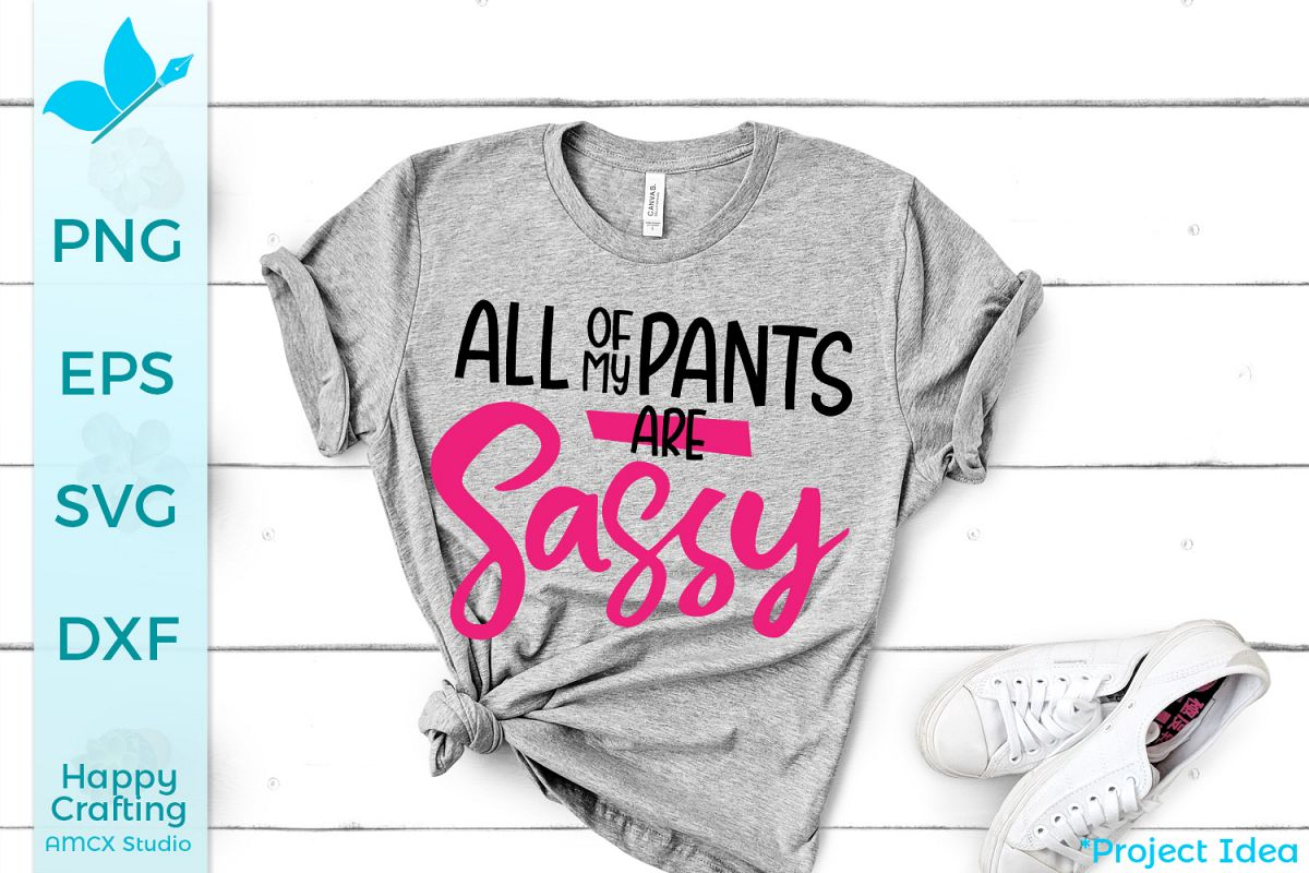 All of my pants are sassy- A Funny Craft File example image 1