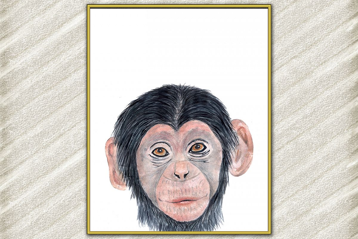 Baby Monkey Safari animal poster, watercolor animals prints example image 1
