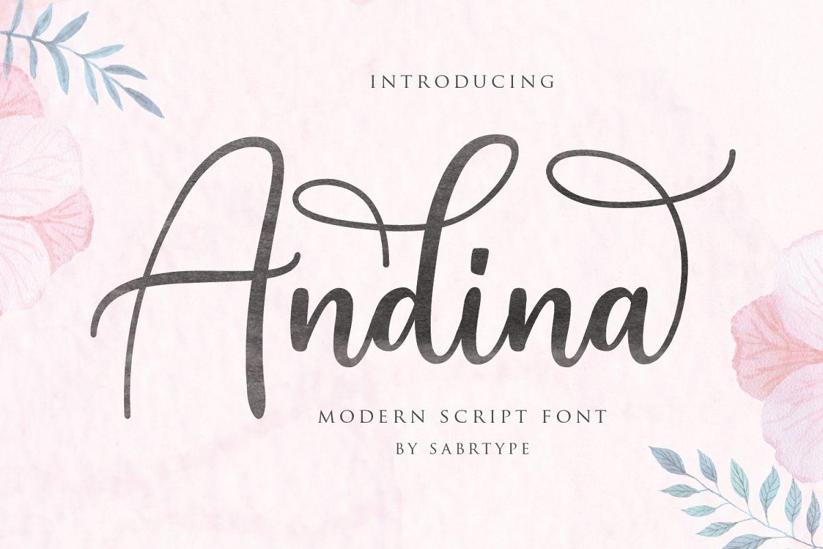 Andina - Modern Script Font example image 1