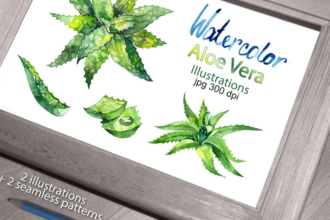 Watercolor aloe vera set example image 1