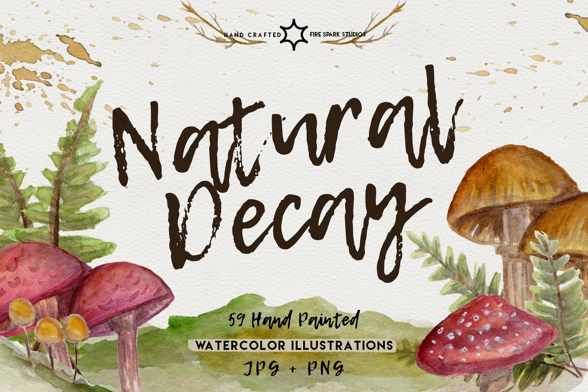Natural Decay Watercolor Illustrations example image 1