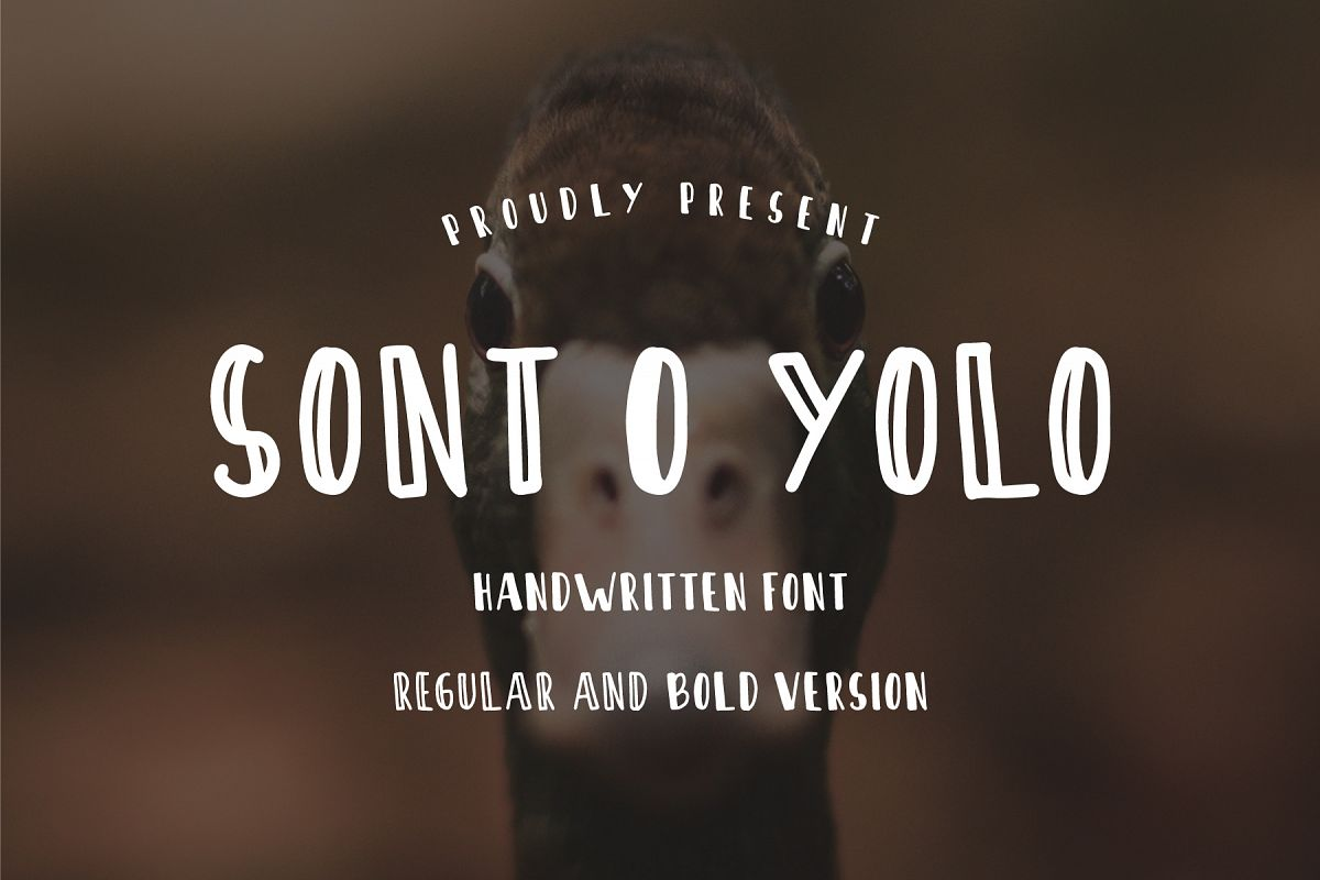 Sont O Yolo - Handwritten Font example image 1
