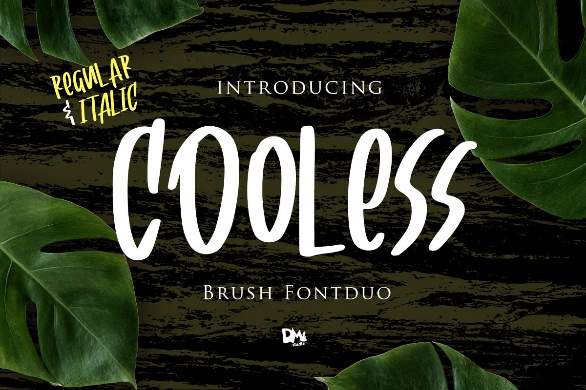 Cooless - Brush Font example image 1