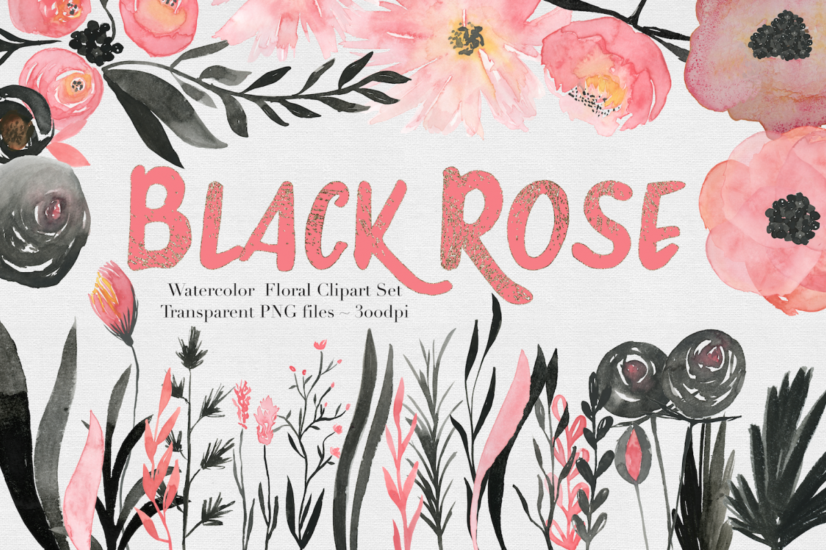 Black & Pink Rose Watercolor Set example image 1